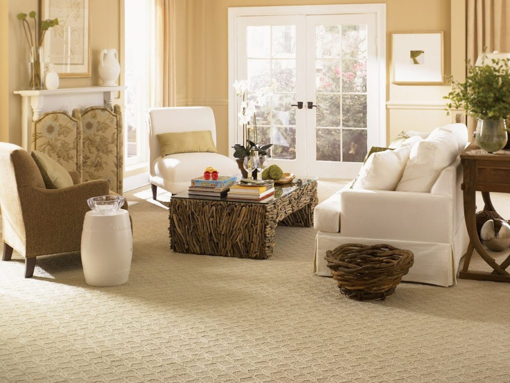 Middlesex, Monmouth, Mercer, and Ocean New Jersey Carpet Cleaning